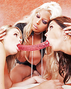 Francesca and Heather are part of an underground lesbo group, the competition around them has been getting rougher and dirtier, putting pressure on those that wanna keep up with the times. The stress to push the limit is what Francesca and Heather are facing as they try to give a performance to the liking of their fans.